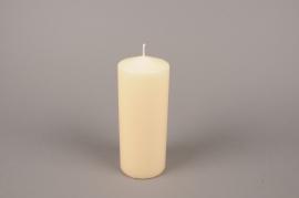 A055E2 Boîte de 6 bougies cylindre ivoire D8cm H20cm