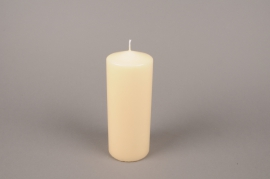 A055E2 Box of 6 candles ivory cylinder D8cm H20cm