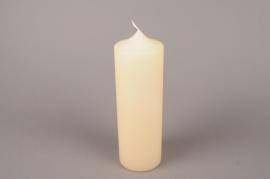 A057E2 Bougie cylindre ivoire D8cm H25cm