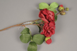 a057nn Camélia artificiel rouge H47cm