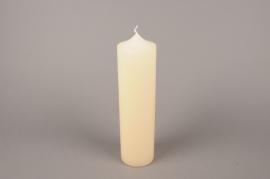 A058E2 Bougie cylindre ivoire D8cm H30cm