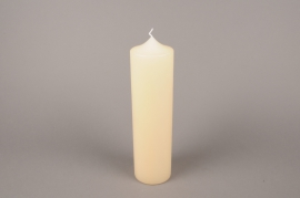 A058E2 Candle ivory cylinder D8cm H30cm