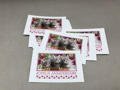A060MQ Pack of 15 postcards Joyeux Anniversaire