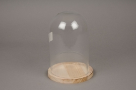 A062I0 Glass bell with wooden plater D14cm H20cm