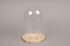 A063I0 Cloche en verre avec plateau bois D17cm H24cm