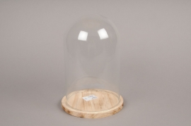 A063I0 Glass bell with wooden plater D17cm H24cm