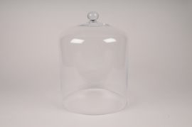 A071W3 Glass dome D28cm H39cm
