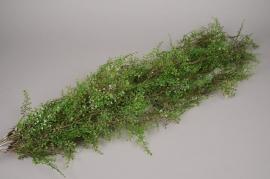 a075nn Piquet de fougère verte artificielle H117cm