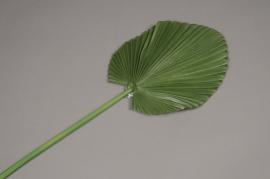 a077nn Feuille de palme artificielle H80cm