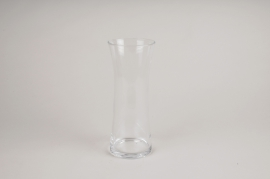 A089W3 Clear glass vase D10cm H25cm