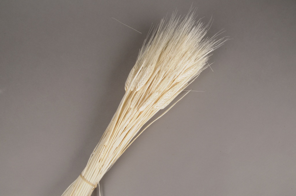 a099ab White dried bearded wheat H70cm