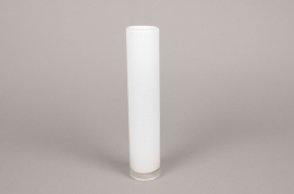 A099PS Cylindric glass vase white D5cm H30cm