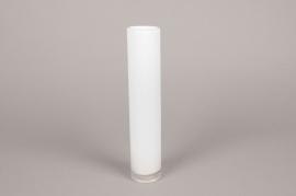 A099PS Cylindric glass vase white D5cm H30cm