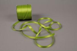 A109UN Satin ribbon apple green 6mm x 100m