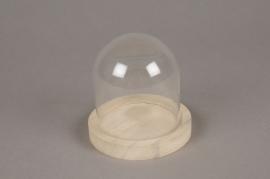 A113PM Cloche en verre avec plateau bois D10cm H10cm