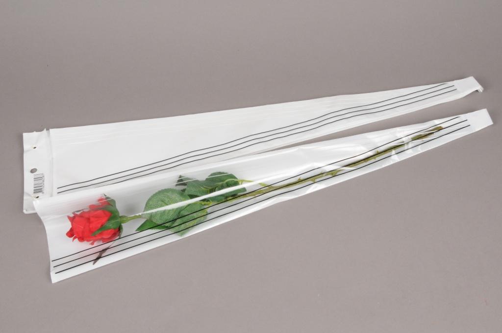 A116MO Paquet 50 étuis à rose blanc ligne 12cm H54cm