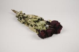 a118wg Roses séchées bordeaux H46cm