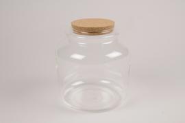 A136PM Glass terrarium D18cm H18cm