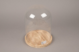A138I0 Glass bell with wooden plater D22cm H30cm