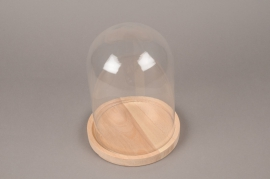 A139DQ Glass bell with wooden tray D17cm H23cm