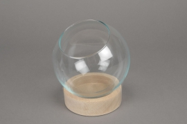 A140DQ C162DQ Glass bell with wooden tray D19cm H18cm