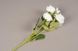 a144nn Artificial white branch rose H70cm