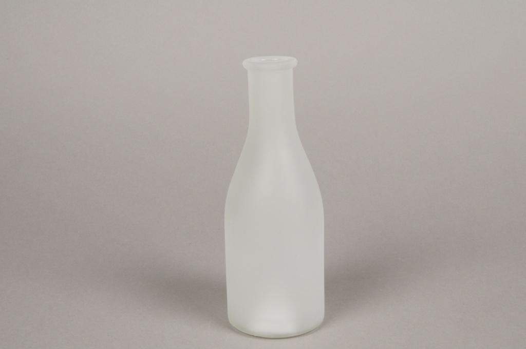 A147I0 Vase bouteille en verre givré D6.5cm H18cm