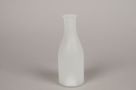 A147I0 Frost glass bottle vase D6.5cm H18cm