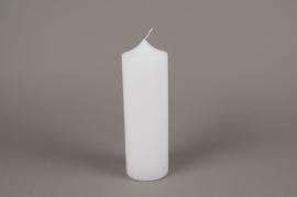 A151E2 Bougie cylindre blanc D8cm H25cm