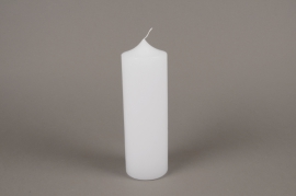 A151E2 White pillar candle D8cm H25cm