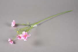 a154nn Artficial pink cosmos H60cm