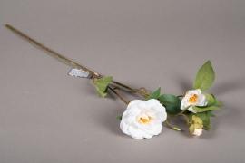 a155nn Camélia artificiel blanc H60cm