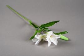 a166nn Lys blanc artificiel H52cm