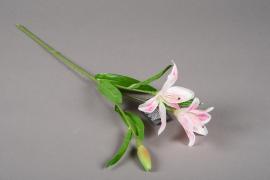 a168nn Lys artificiel rose H50cm