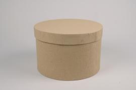 A173UN Set de 2 boîtes en carton marron D27.5cm H18cm