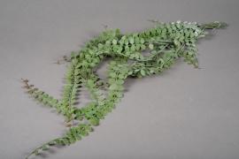 a179nn Chute de feuillage vert 97cm