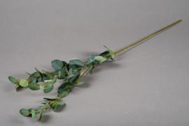 a180nn Branche d'eucalyptus artificiel vert H75cm