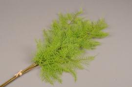a182nn Botte de fougère artificielle verte H75cm