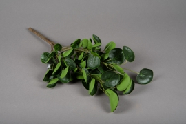 a188nn Artificial green branch of pilea H48cm