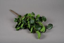 a188nn Branche articielle de pilea vert H48cm