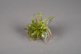 a191nn Green artificial tillandsia H17cm