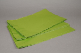 A199BD Bag of 50 bags metal light green 20x35cm