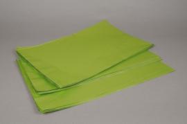 A199BD Paquet de 50 sachets papier métal  vert pomme 20x35cm