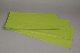 A204BD Bag of 50 bags metal light green 25x40