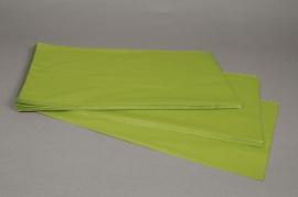 A204BD Paquet de 50 sachets papier métal vert pomme 25x40cm