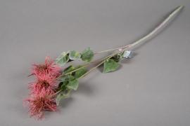 a205nn Artificial pink xanthium H78cm