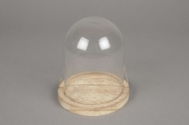 A215U7 Glass bell with wooden tray D11cm H12.5cm