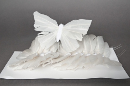 A222E9 Boîte de 12 papillons blanc 18cm