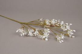 a241nn Alyssum artificiel blanc H63cm