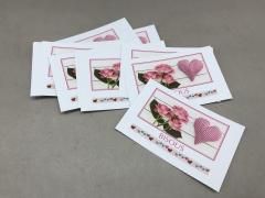 A247MQ Paquet de 15 cartes Bisous